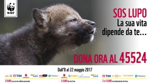 SOS Lupo SMS solidale 2017